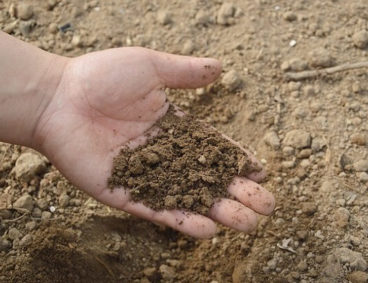 Analisi del Terreno per ottenere maggior rendimento