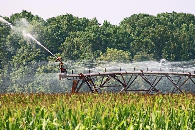 Fertirrigazione e relazione suolo, acqua, pianta